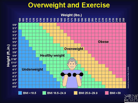 height to weight ratio